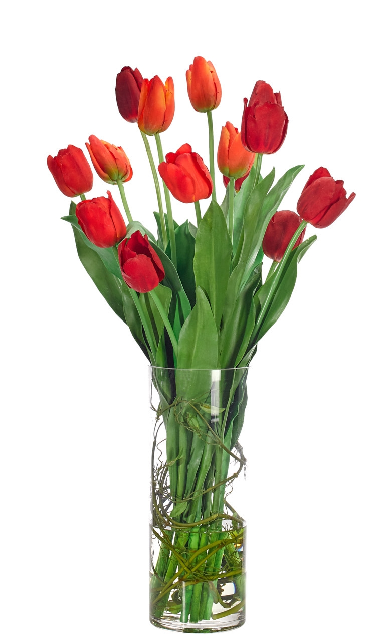 Tulip, Orange Red, Glass Cylinder, 15wx16dx30h