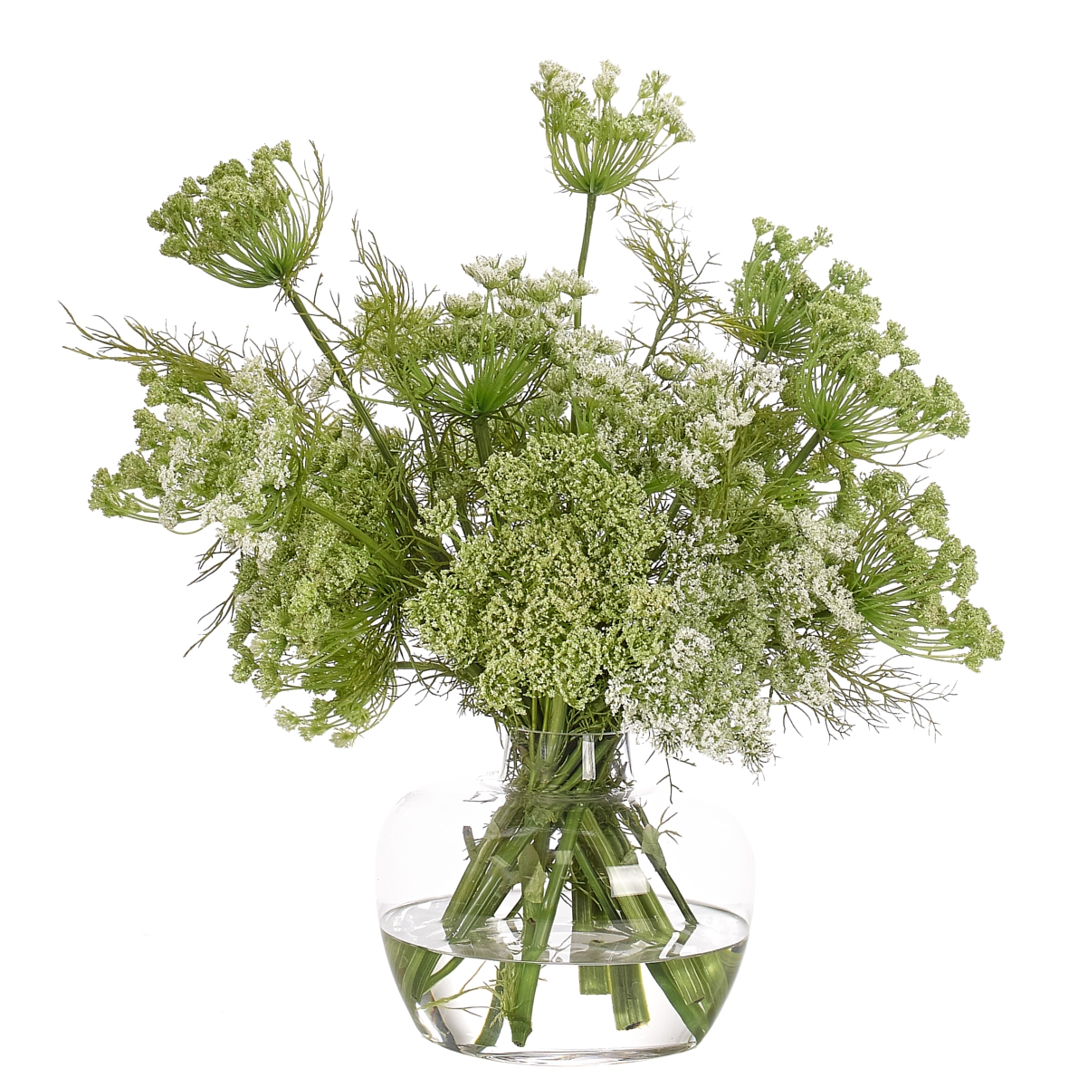 Queen Anne's Lace, White Green, Glass Ginger Jar, 18wx17dx19h