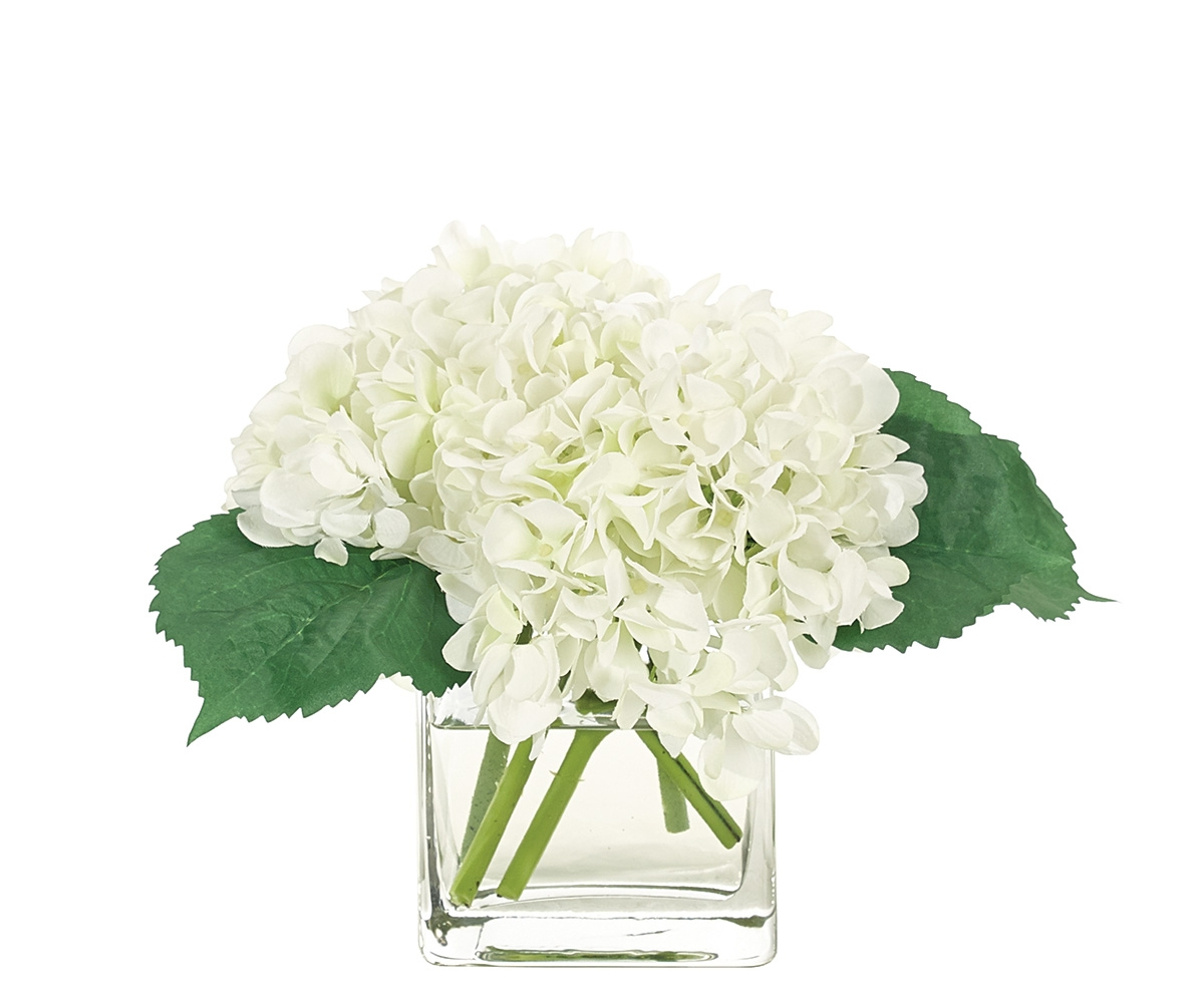 Hydrangea, White, Glass Cube, 12wx12dx9h