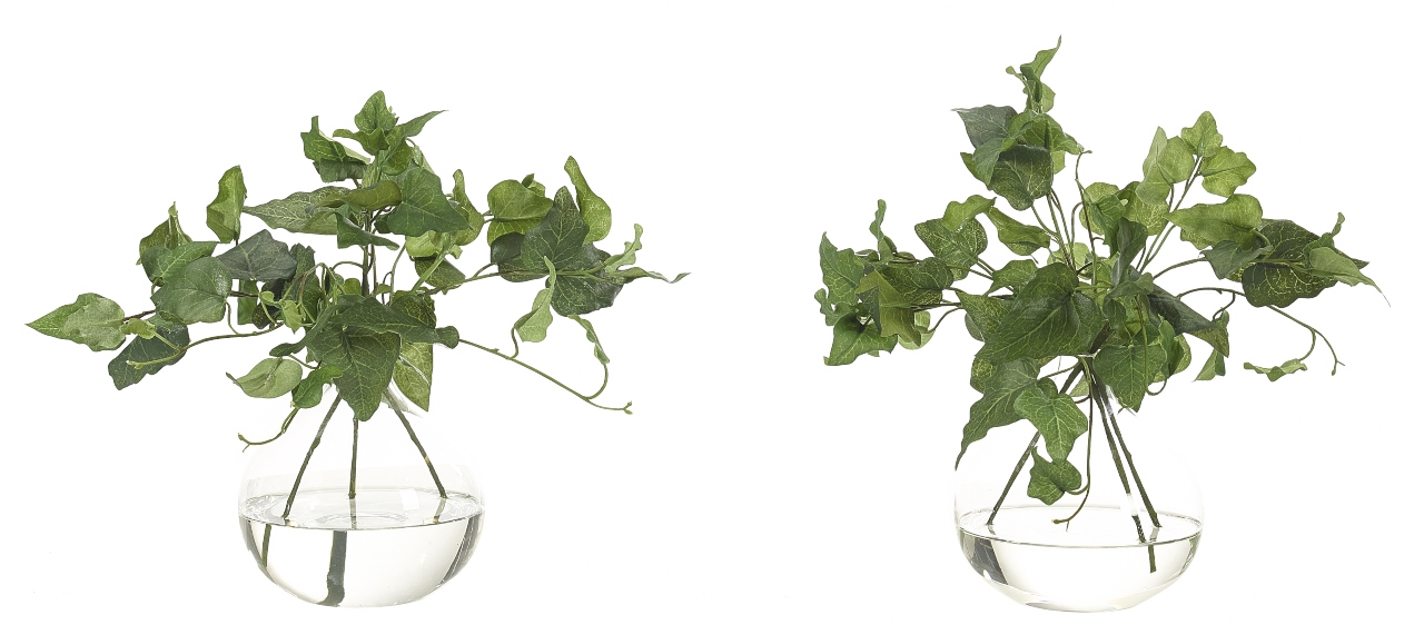 Ivy, Glass Bubble, Set Of 3, 10wx10dx9h