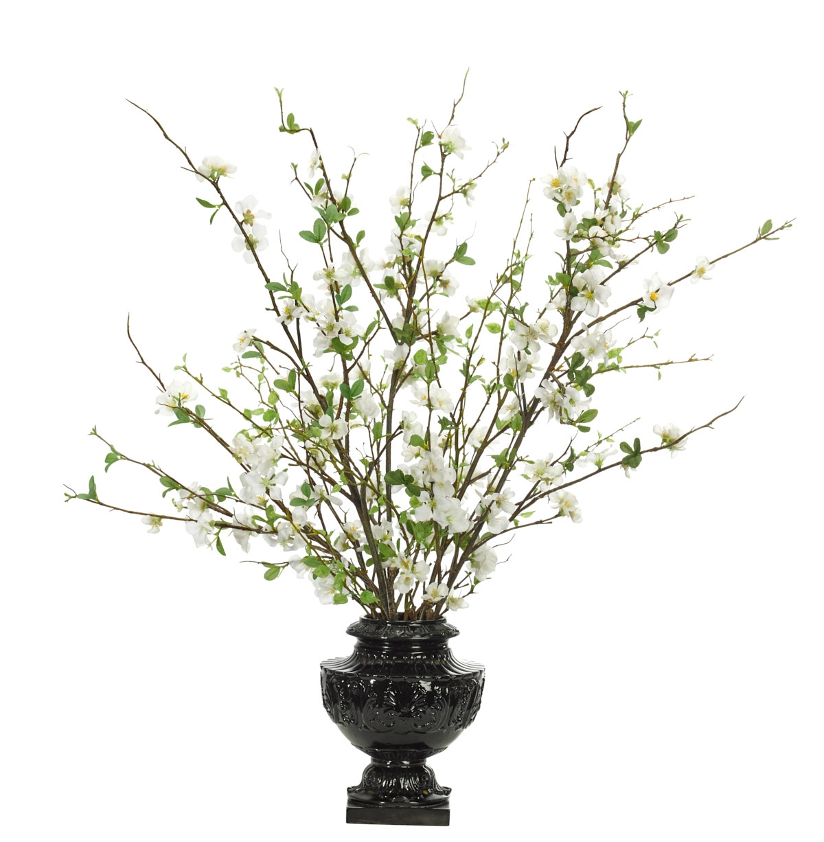 Quince Blossom, White, Pedestal Urn Black, 30wx27dx36h