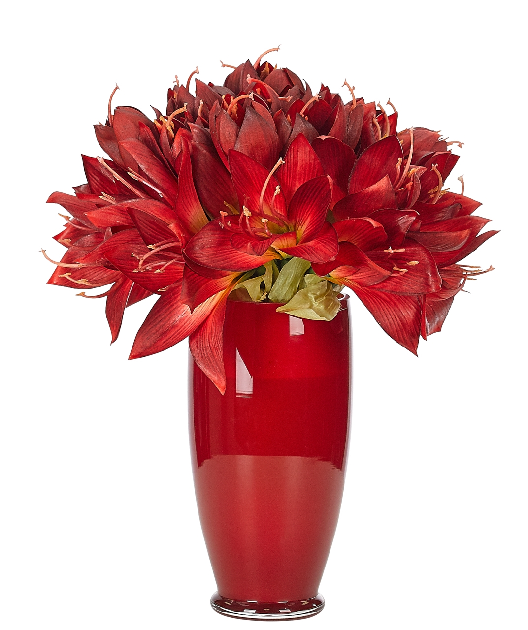 FINAL SALE | Amaryllis, Red, Glass Vase, 10wx10dx13h