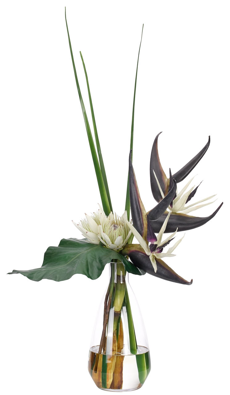 Bird of Paradise Protea,Cream Purple,Glass Vase,22wx18dx43h