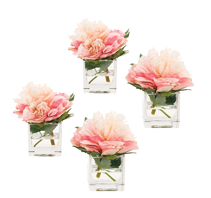 Peony, Cream Pink, Glass Cube, Set of 4, 6wx7dx7h