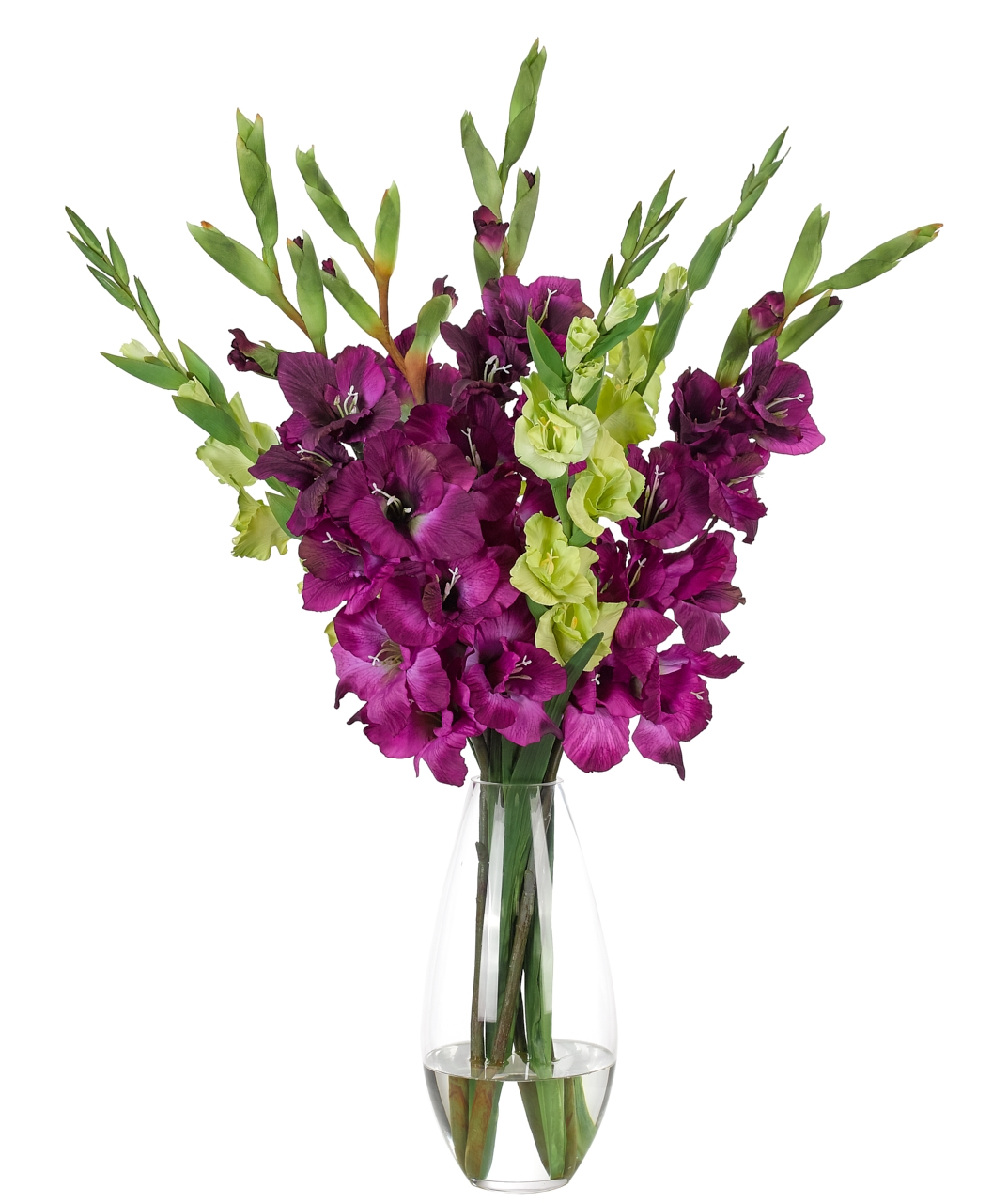 Gladiola, Purple Green, Glass Teardrop Vase, 20wx20dx34h