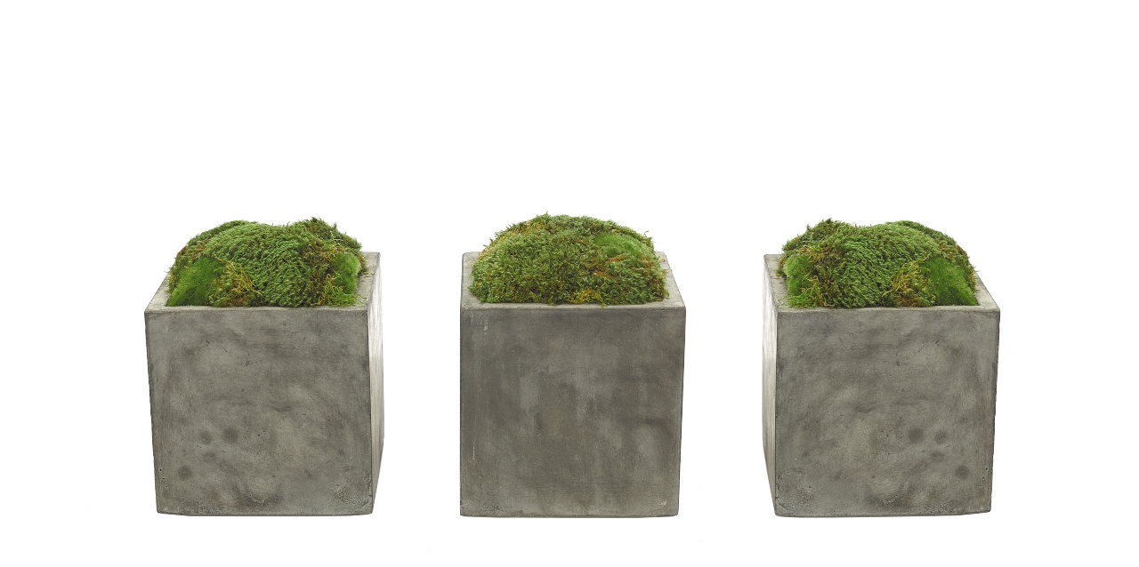 Moss Mound, Cube Concrete Finish, Set of 3, 8wx8dx10h