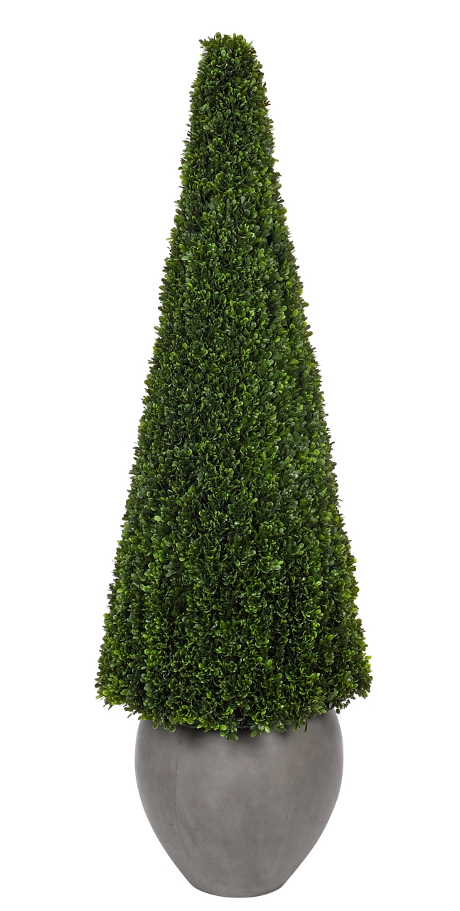 UV Rated and suitable for outdoor use! Boxwood Cone, Concrete Pot, 20wx20dx67h