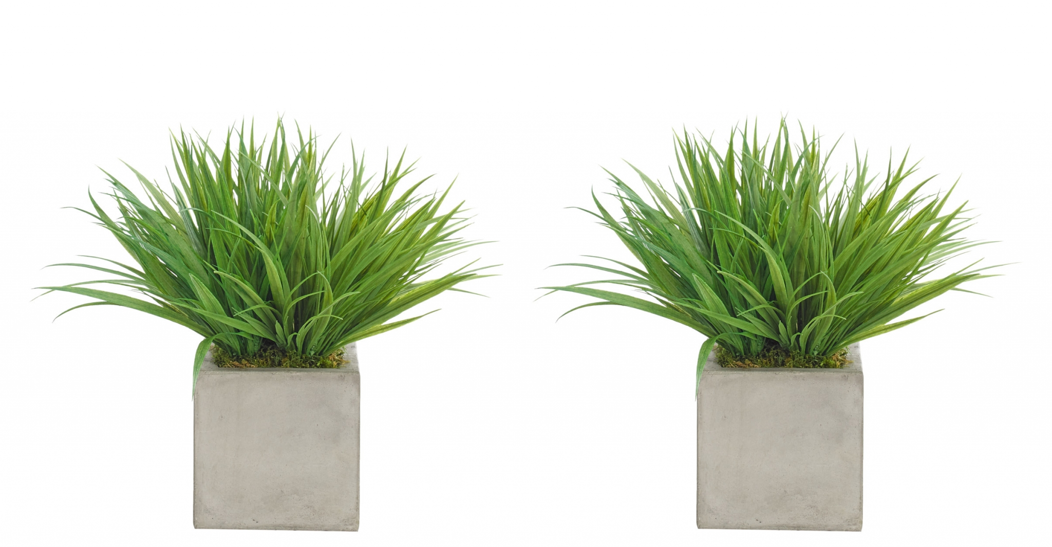 Grass, Green, Cube Concrete Finish, Set Of 2, 17wx17dx14h