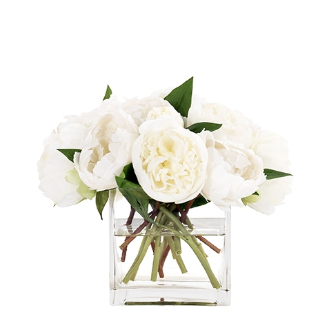 Peony, White, Glass Cube, 12wx12dx9h