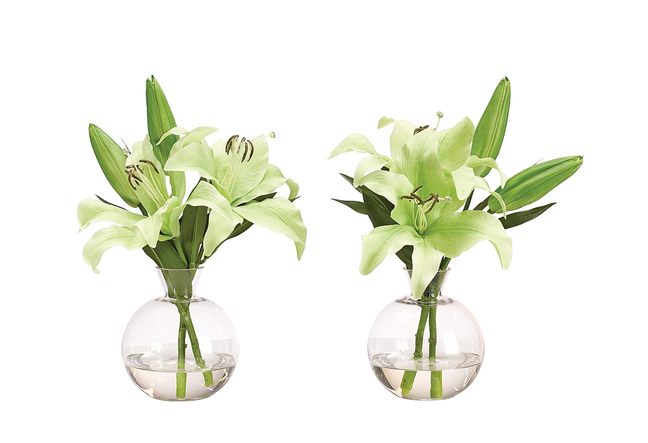 Lily Casablanca Green, Glass Decanter, Set of 2, 12wx10dx14h