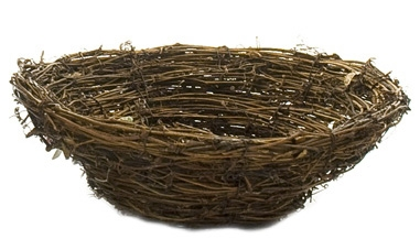 Twig Basket | Box of 4