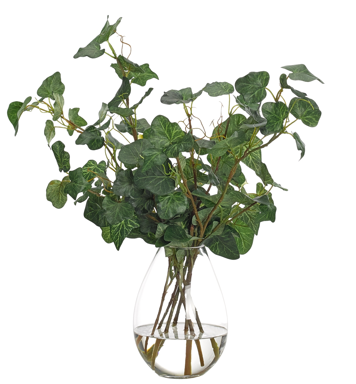 Ivy, Glass Teardrop Vase, 27wx15dx19h