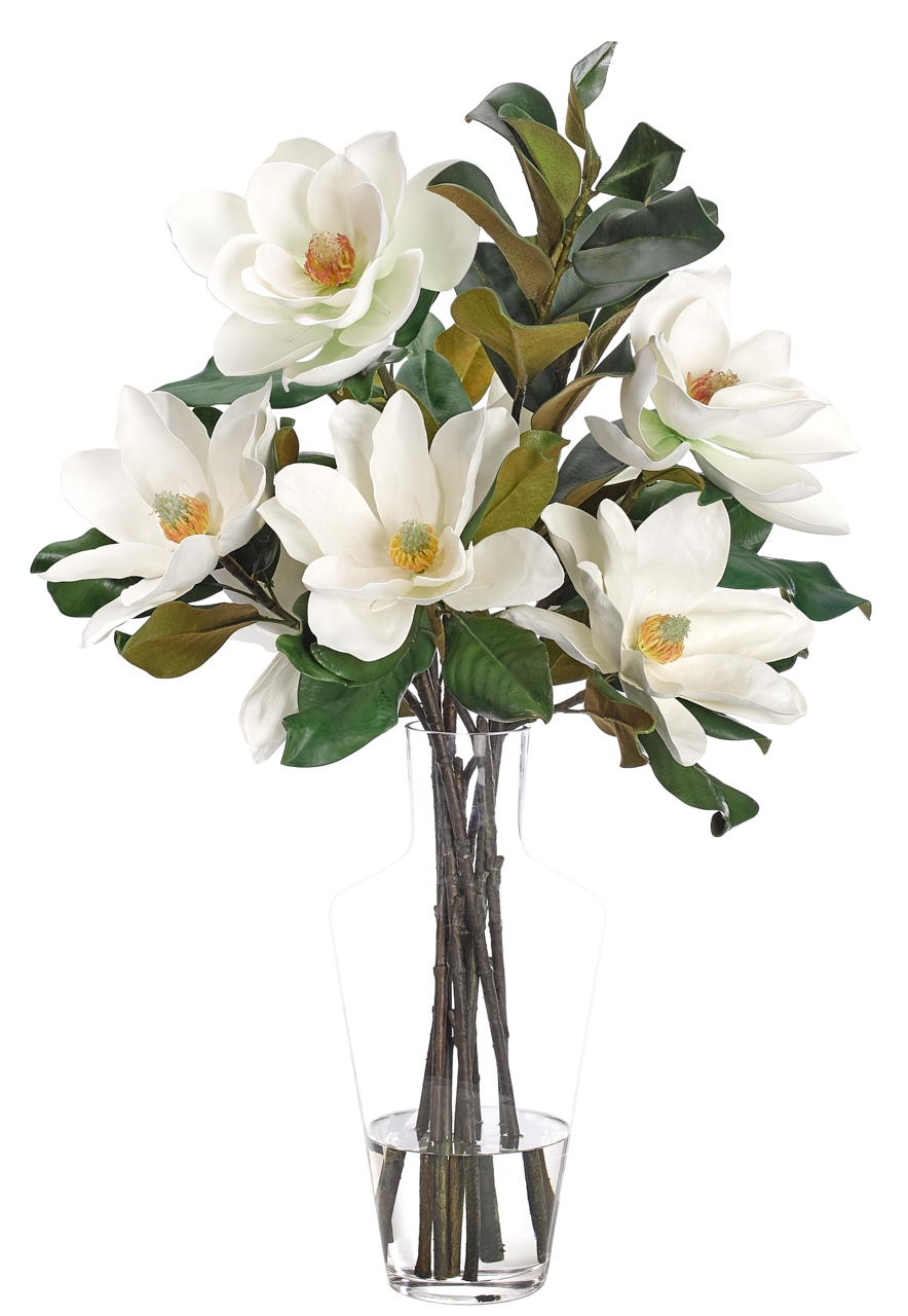 Magnolia, White, Glass Vase, 22wx21dx35h