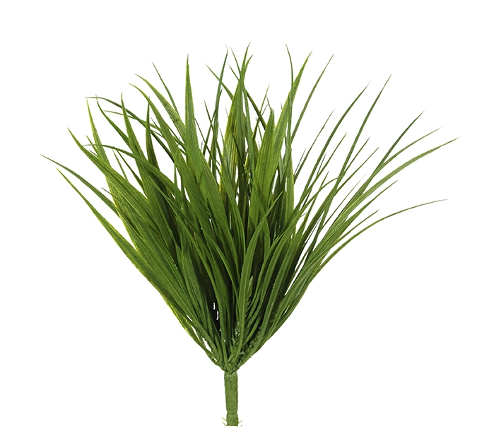 Grass Green  | BOX OF 8