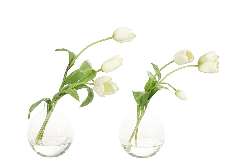 Tulip, White Green, Glass Bubble, Set of 2, 15wx8dx16h
