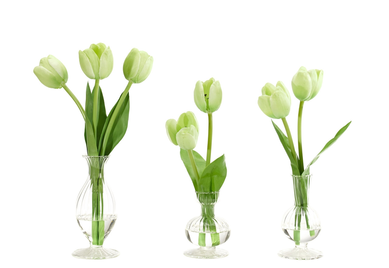 Tulip,Green,Glass Bud Vases, Set Of 3, 5-7wx3-6dx11-13h