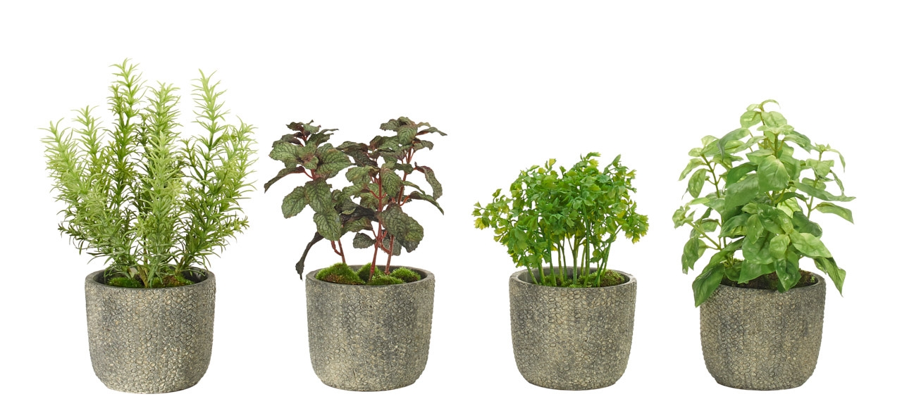 Herb Assortment, Terracotta Pot, Set Of 4, 7-8wx7-8dx8-12h