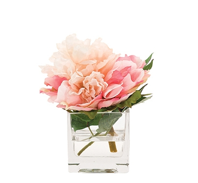 Peony, Cream Pink, Glass Cube, 6wx7dx7h