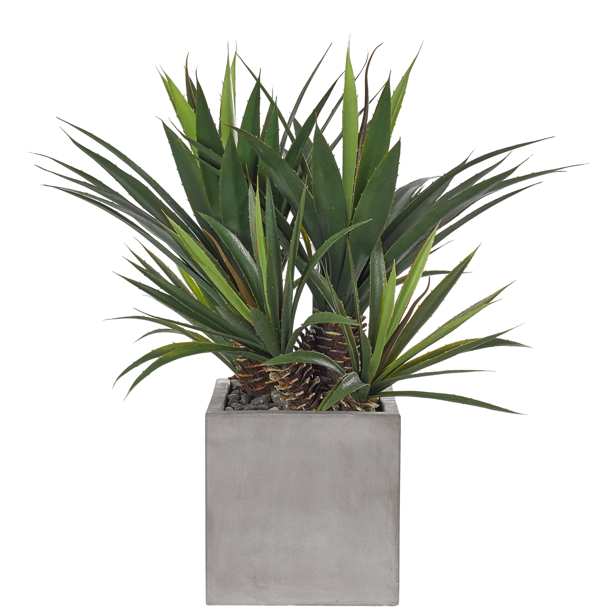 UV rated and suitable for outdoor use! | Aloe Plant, Cube Concrete Finish, 28wx28dx29h