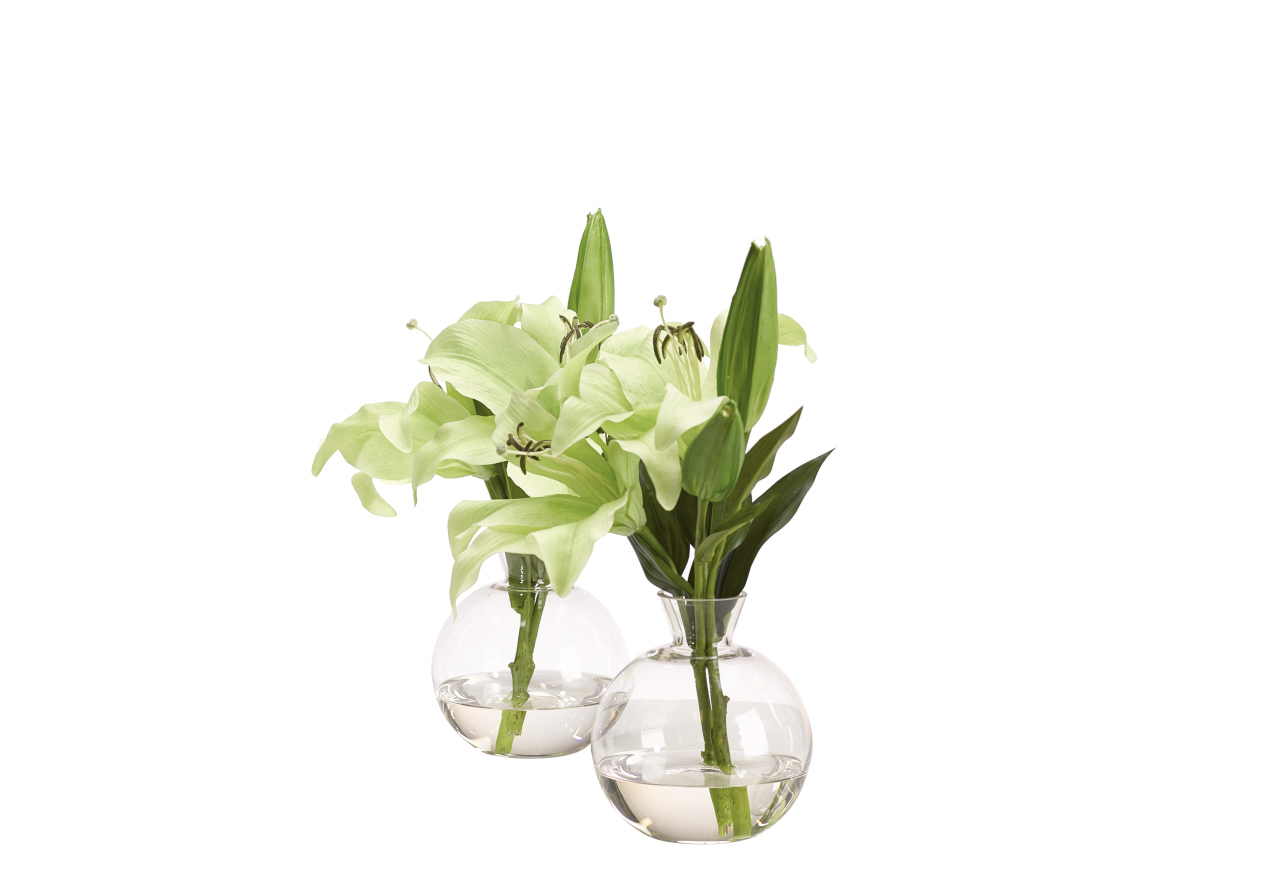 Lily Casablanca | Set of 2
