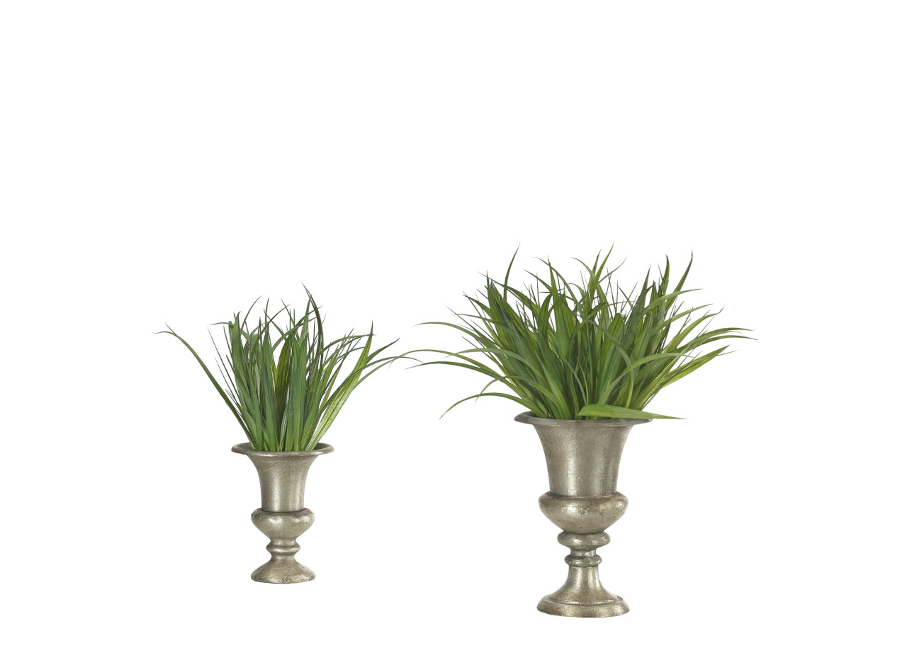Grass | Set of 2